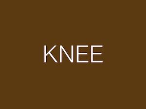 Knee.001 copy